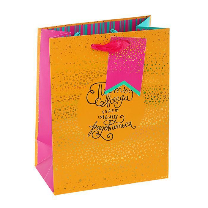 Пакет подарочный Пусть всегда будет чему радоватьсяПодарки<br><br>Размер: 23 см ? 17,8 см ? 9,8 см; Объем: None; Материал: Бумага, картон, текстиль; Цвет: None;