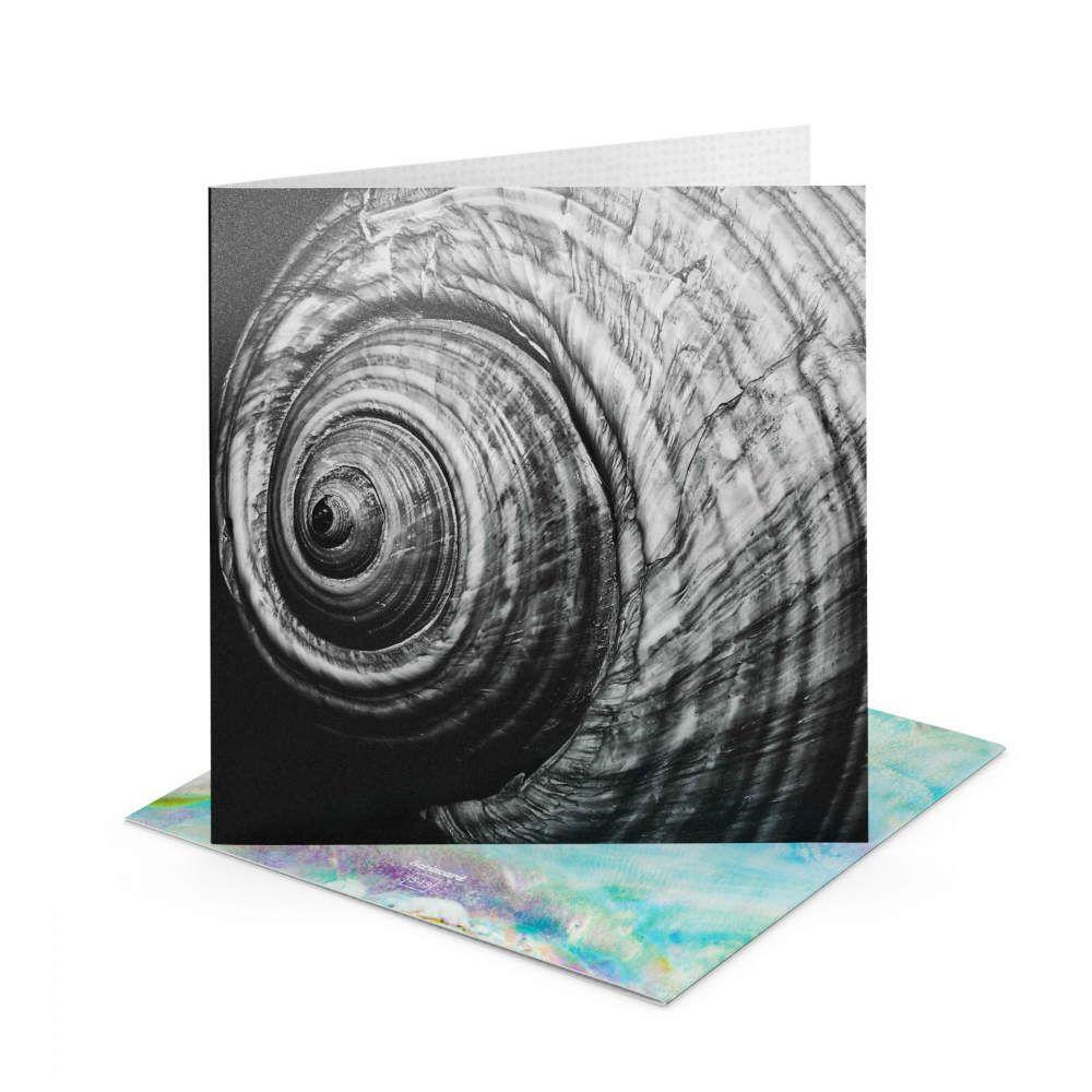 Открытка Scrincard РакушкаПодруге<br>Ракушка, как напоминание о лете и о море.<br>Размер: 20 х 20 см; Объем: None; Материал: Картон; Цвет: None;