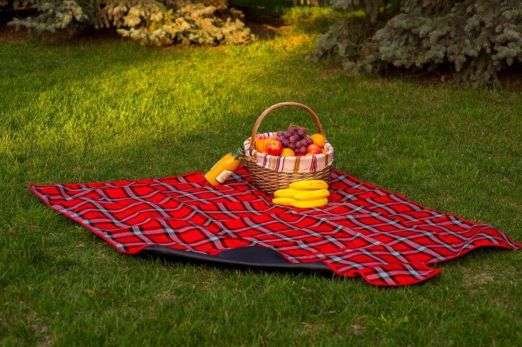 Плед для пикника Sleepy Picnic ClassicИнтерьер<br>Плед для пикника в классическом стиле.<br>Размер: 130 х 150 см; Объем: None; Материал: Акрил; Цвет: None;