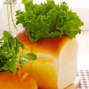 "Буханка хлеба ""Сочный салат-латук"""